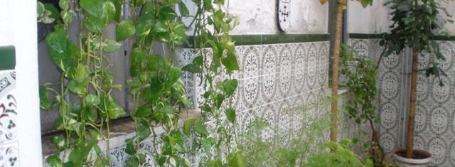 Venta de piso en Linares, zona Centro