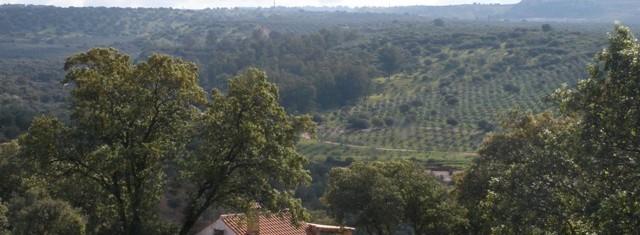 Venta de finca rústica en Jaén, zona Carretera de Linares a Baños de la Encina